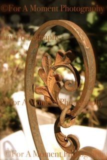 Web rust