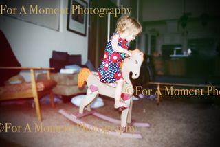 Presley horse1