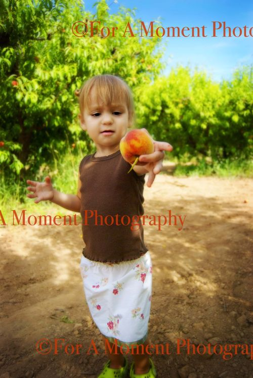 Presley peaches
